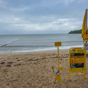 Beware of marine stingers